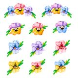 Watercolor flower set, hand drawn illustration of pansies, colorful floral elements isolated on white background. Yellow,pink,red, stock illustration