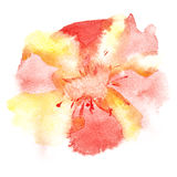 Watercolor flower Stock Photo
