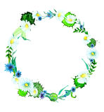 Watercolor flower wreath background Stock Image