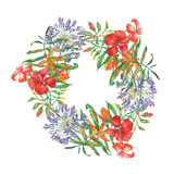 Watercolor flower wreath. Royalty Free Stock Photography
