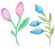 Watercolor flowering branch Stock Photo