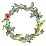 Watercolor flowering cactuses wreath. Hand painted opuntia with red and yellow flower isolated on white background Stock Photography