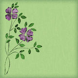 Watercolor flowers. Purple watercolor flowers on green background Stock Photography