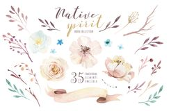 Watercolor flowers bouquets set with feathers. Watercolour color organic feather design print. Isolated illustration. Watercolor flowers bouquets set vector illustration