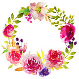 Watercolor flowers Royalty Free Stock Image