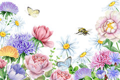 Watercolor flowers and butterflies and bee on white