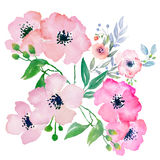 Watercolor flowers, clip art Royalty Free Stock Images