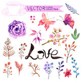 Watercolor flowers collection Stock Photography