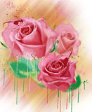 Watercolor flowers. Collection of roses. A luxurious collection of watercolor roses, with elements of splatter paint Stock Photography