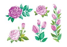 Watercolor flowers in different styles Stock Photography