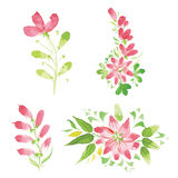 Watercolor flowers in different styles Stock Image