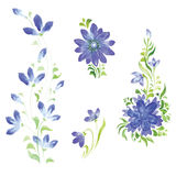 Watercolor flowers in different styles Stock Photos
