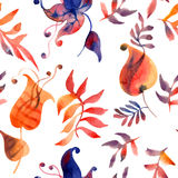 Watercolor flowers and foliage Royalty Free Stock Image