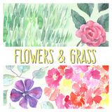 Watercolor flowers and grass set Royalty Free Stock Photos