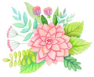 Watercolor flowers. Hand drawn vintage bouquet with anemone, peony, rose hip, leaves and branches. Floral artwork on white background Stock Illustration