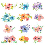 Watercolor Flowers. Illustration of watercolor flower set Royalty Free Stock Photos