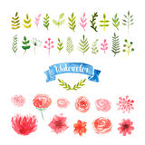 Watercolor flowers, laurels and leaves Stock Photography