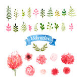Watercolor flowers, laurels and leaves Royalty Free Stock Image