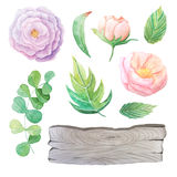 Watercolor flowers, leaves and wood plank Royalty Free Stock Image