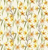 Watercolor flowers pattern. Hand-drawn watercolor floral seamless pattern with the narcissus flowers on the white background in vintage style. Natural and Vector Illustration