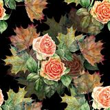 Watercolor flowers rose with leaves maple. Floral seamless pattern on a black background. Watercolor  branch  floral seamless pattern design illustration Royalty Free Stock Photo