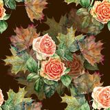 Watercolor flowers rose with leaves maple. Floral seamless pattern on a dark brown background. Watercolor  branch  floral seamless pattern design illustration Royalty Free Stock Images