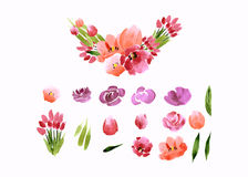 Watercolor flowers roses peonies collection Royalty Free Stock Photo