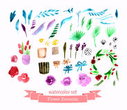 Watercolor flowers roses peonies collection Stock Photos