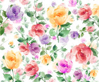 Watercolor  Flowers seamless background pattern. Colorful Abstract  Rose flower hand painted on a crisp white background in toss design Stock Photos