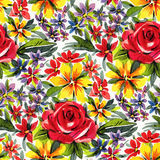 Watercolor flowers Royalty Free Stock Photos