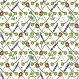 Watercolor flowers  seamless pattern. Watercolor flowers seamless pattern. hand-drawn botanical illustration. floral composition for congratulations Royalty Free Stock Photography