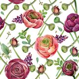 Watercolor flowers  seamless pattern. Watercolor flowers seamless pattern. hand-drawn botanical illustration. floral composition for congratulations Royalty Free Stock Photo