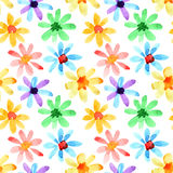 Watercolor flowers seamless Royalty Free Stock Photos