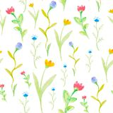 Watercolor flowers  spring seamless pattern Royalty Free Stock Image