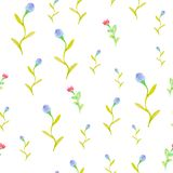 Watercolor flowers  spring seamless pattern Royalty Free Stock Photos