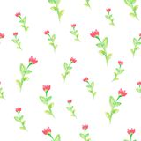 Watercolor flowers  spring seamless pattern Royalty Free Stock Images