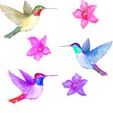 Watercolor. Flowers and three birds in the air. vector illustration