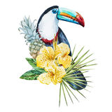 Watercolor flowers with toucan. Beautiful vector image with nice watercolor tropical flowers and toucan Stock Image