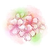 Watercolor flowers. Vector illustration. Watercolor frash flowers. Vector illustration EPS 10 Stock Illustration