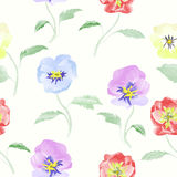 Watercolor flowers viola seamless pattern bright backgound Royalty Free Stock Photography