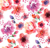 Watercolor flowers on white Royalty Free Stock Images
