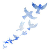 Watercolor flying birds silhouettes Stock Images