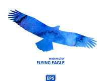 Watercolor flying blue eagle Stock Images