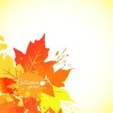 Watercolor  foliage Stock Photo