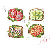 Vegetarian toasts with tomato, cucumber, tofu cheese, white beans and lattuce vector illustration