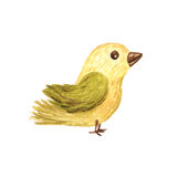 Watercolor forest bird children illustration Stock Images