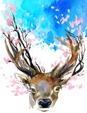 Watercolor Forest Deer and spring pink blossom branch. Stock Photography