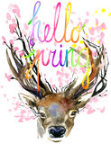 Watercolor Forest Deer and spring pink blossom branch. Royalty Free Stock Photography