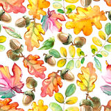 Watercolor forest seamless pattern. Hand painted texture with acorns and leaves. Natural objects on white background Stock Photos