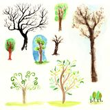 Watercolor forest trees brown wood outlines leaves branches plants green spring nature set isolated. Watercolor forest trees brown wood outlines leaves branches vector illustration